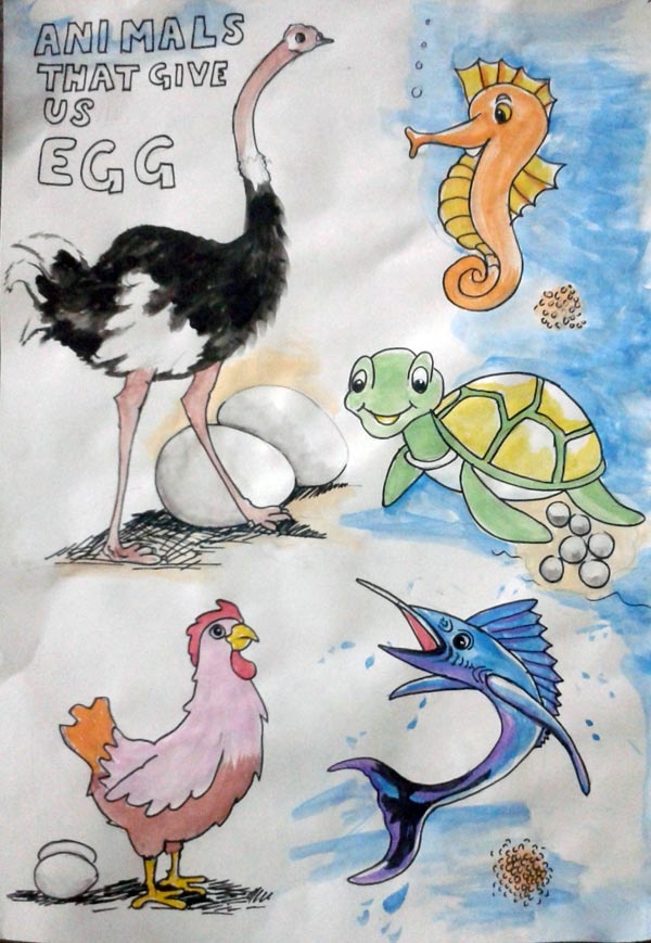 animal that give eggs, water colours poster for kids