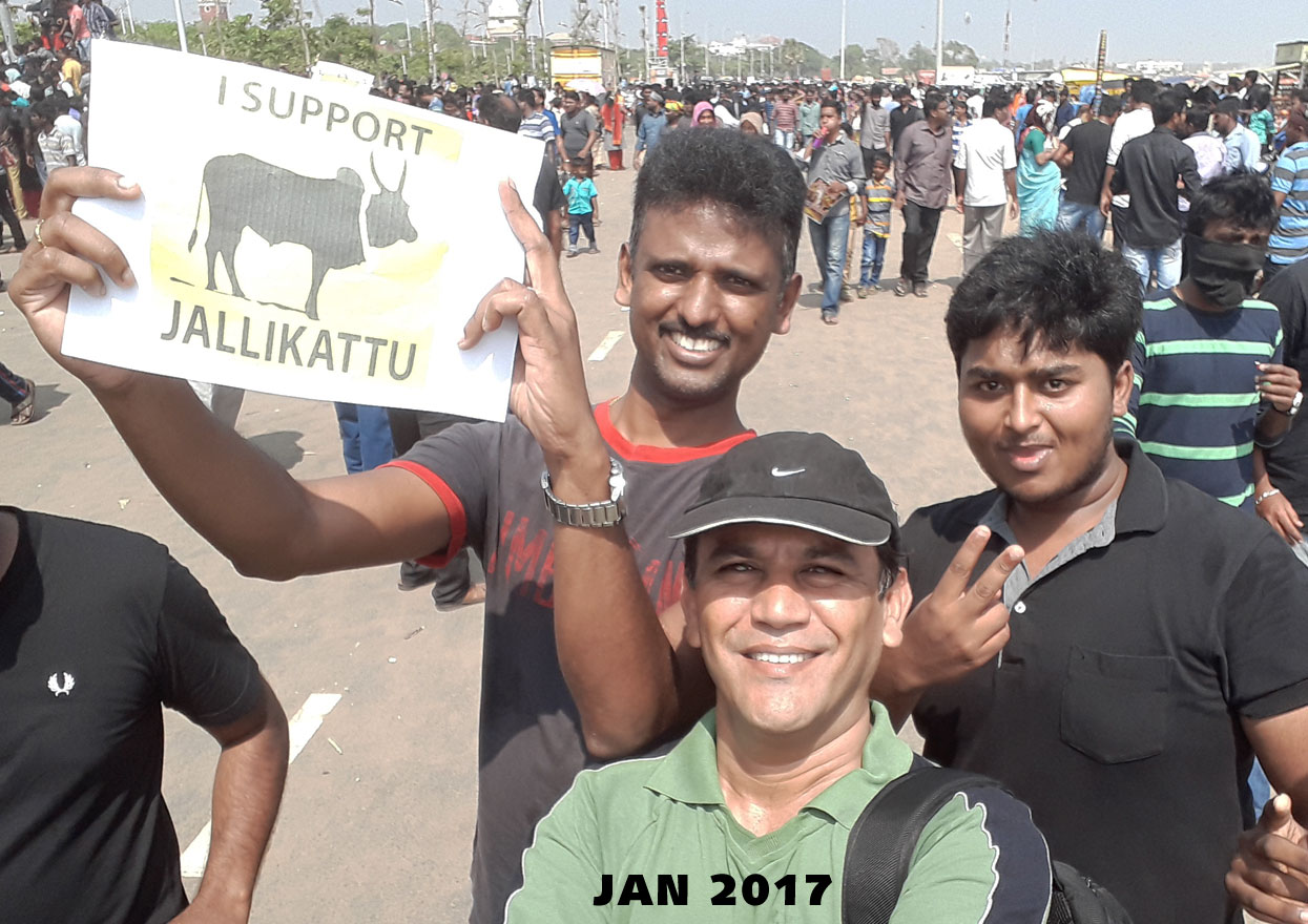 nahid sikander at marina beach in support of Jallikattu