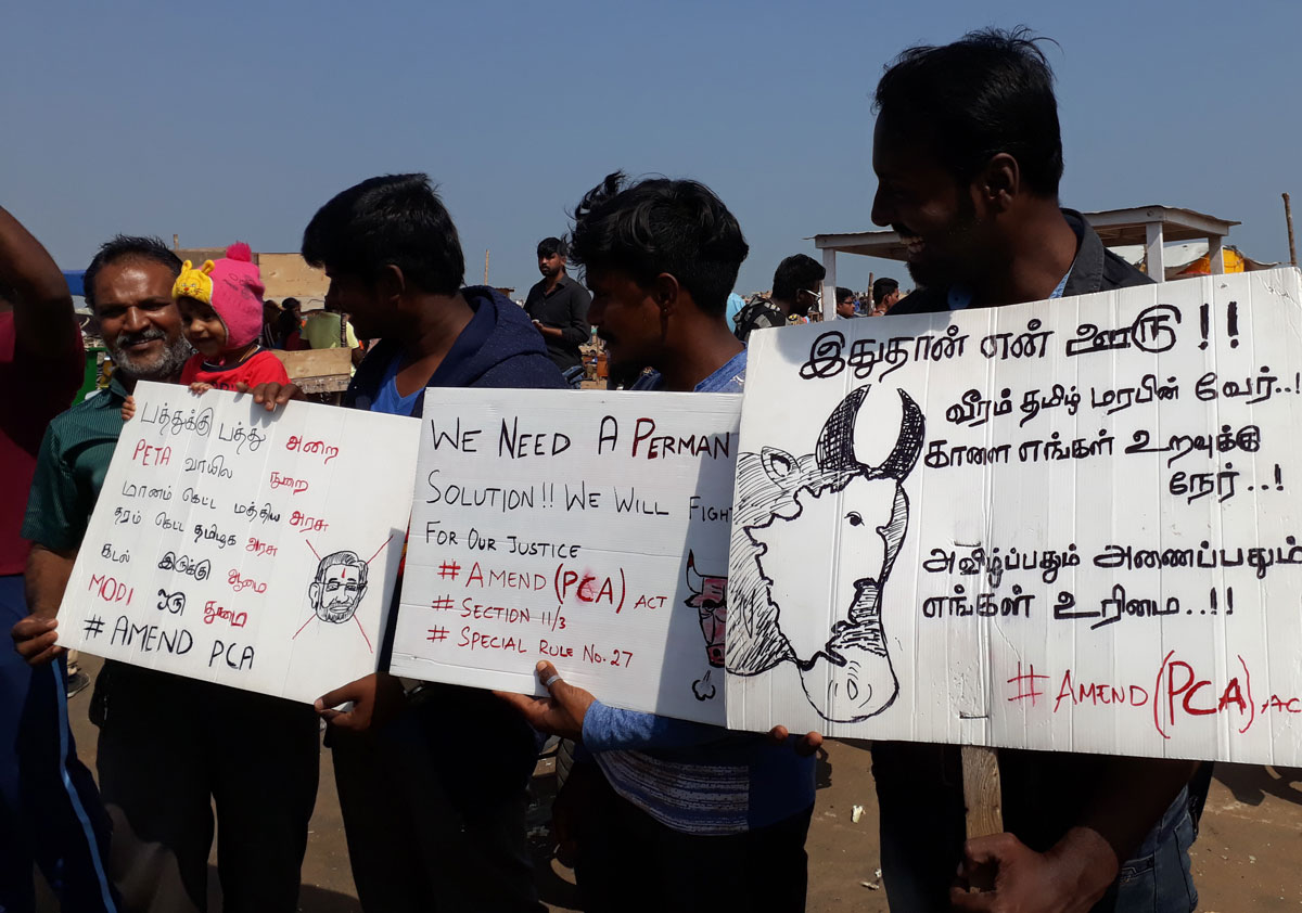 protesters at marina beach