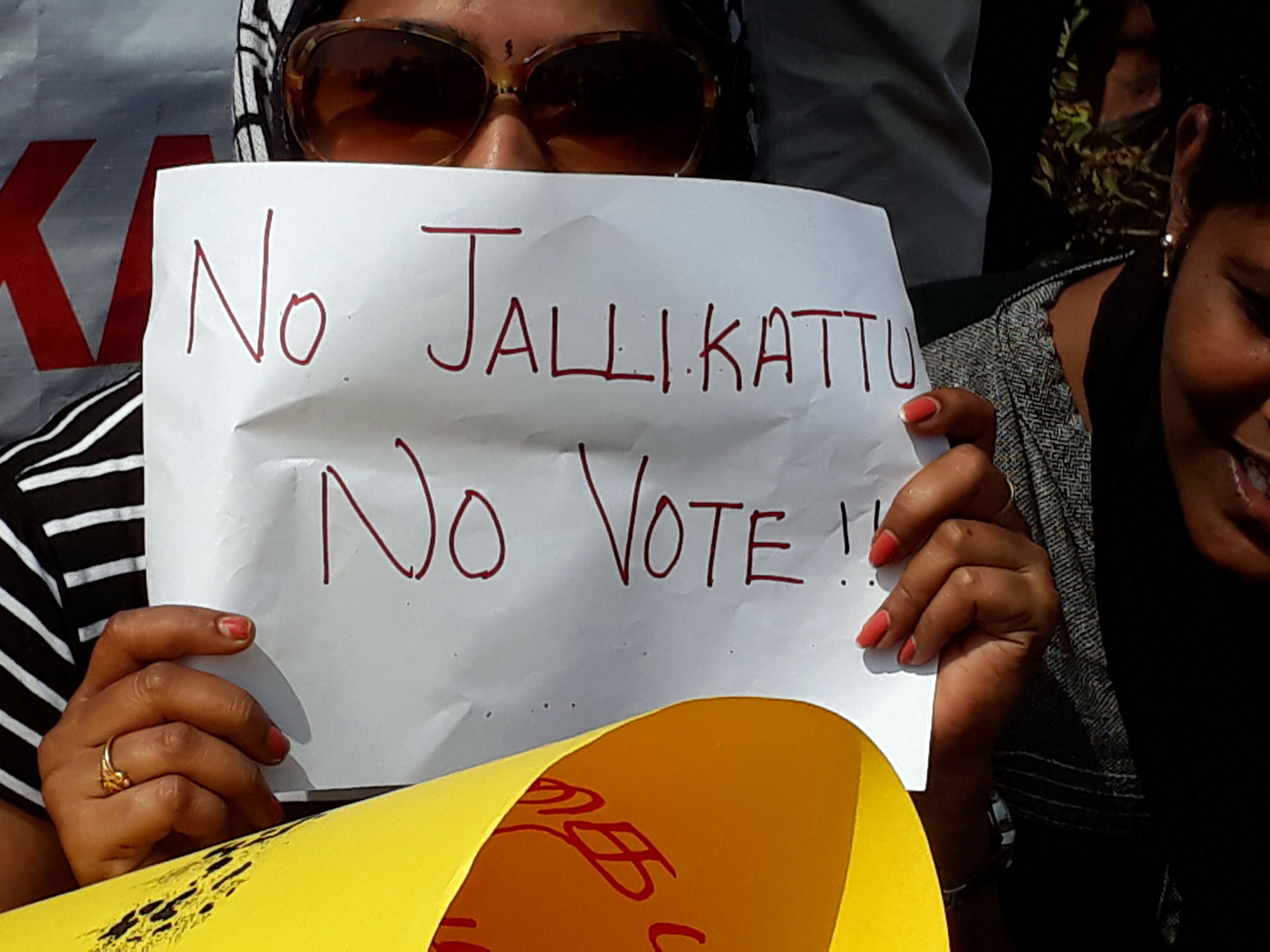 no jallikattu and no vote