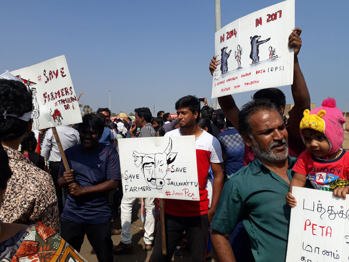 people at protest march at marina beach, Chennai