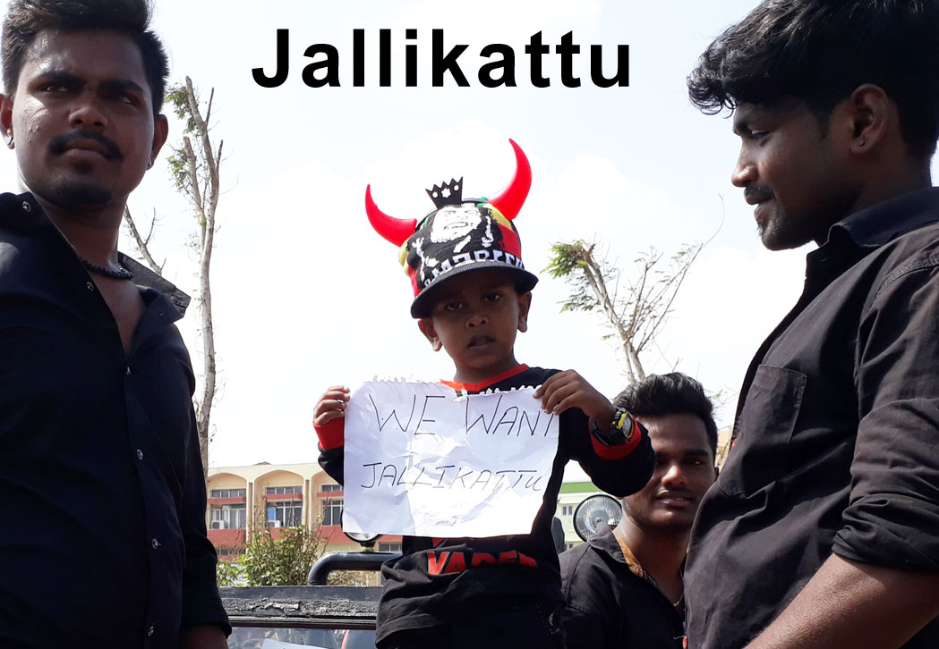 boy holding poster with wearing horn