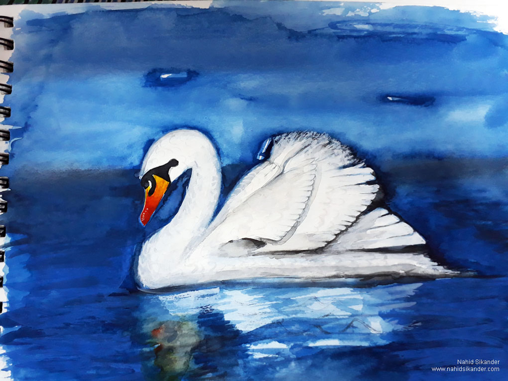 swan painting water colours